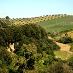 Rome before the Romans, discovering Etruscan Cerveteri
