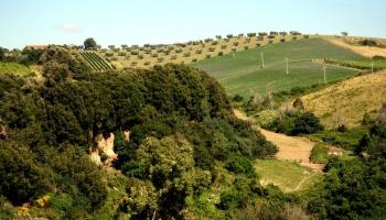 Rome before the Romans, discovering Etruscan Cerveteri