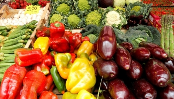 Finding the best food markets in Rome